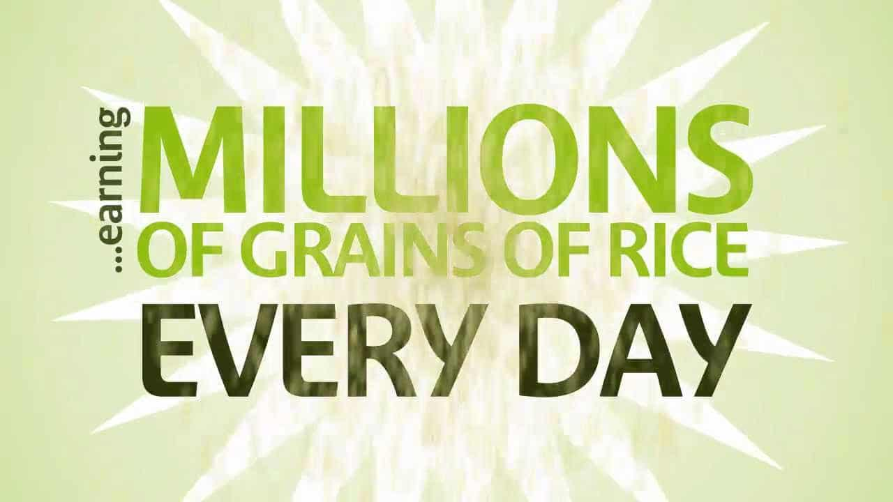 Poster- Millions of grains of rice everyday